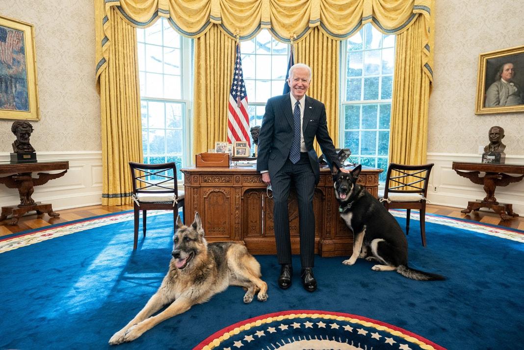 Bajden sa psima u Bijeloj kući