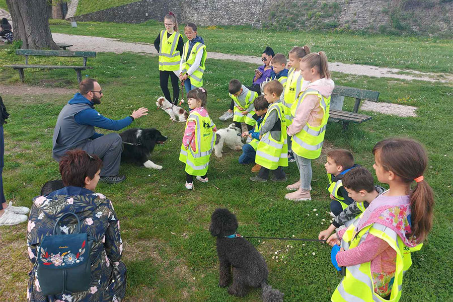 djeca, psi i odrasli stoje na livadi