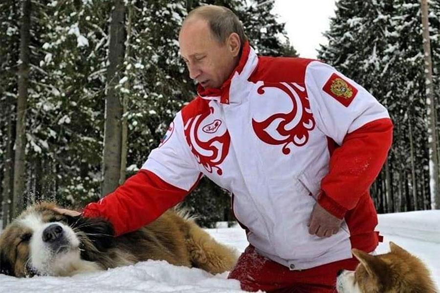 Vladimir Putin sa dva psa na snijegu