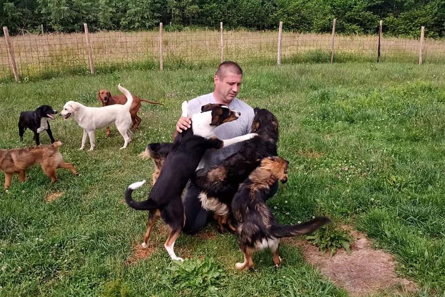 čovjek na livadi okružena psima s kojima se igra