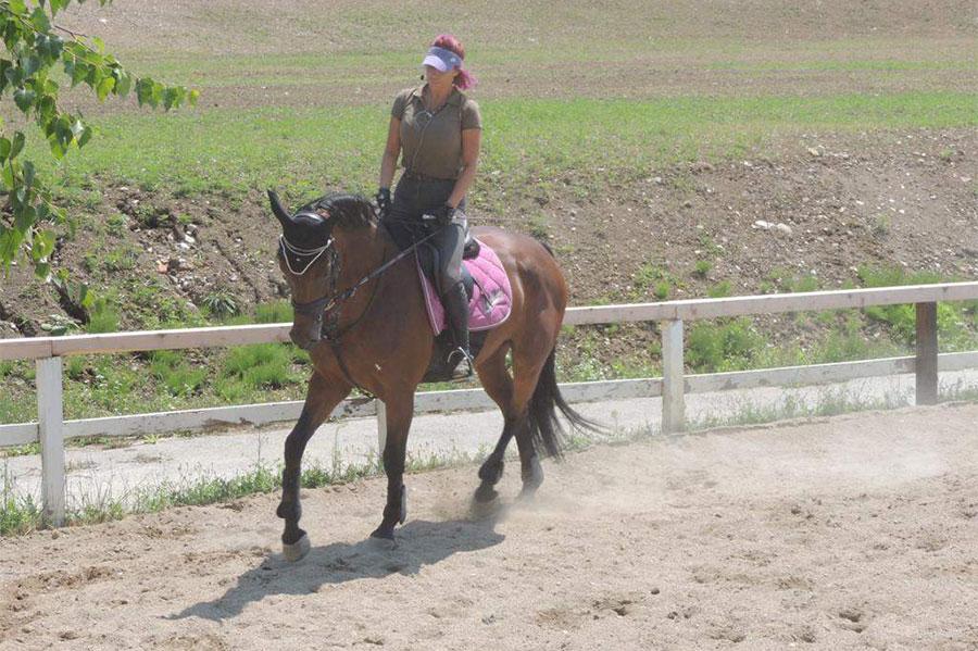 Tamara Ćosić jaše smeđeg konja