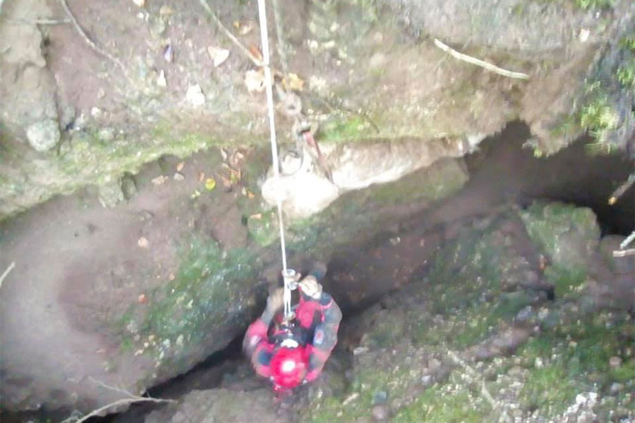 pas spašen iz jame u Nevesinju